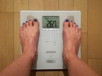 美穀菜ダイエット29日目の朝の体脂肪率